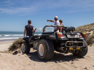 Beach Buggy Safari